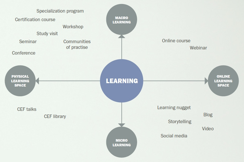 CEF learning types